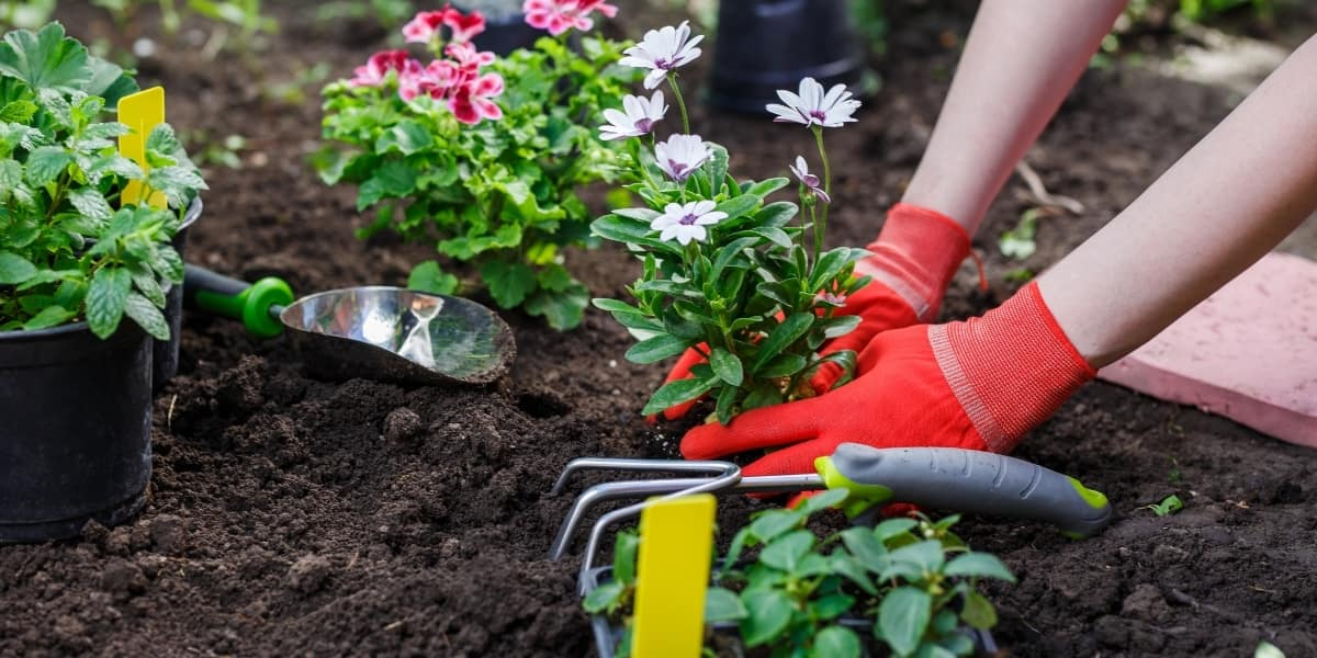 Inspirational Gardening Quotes